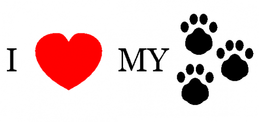 I_love_my_pet
