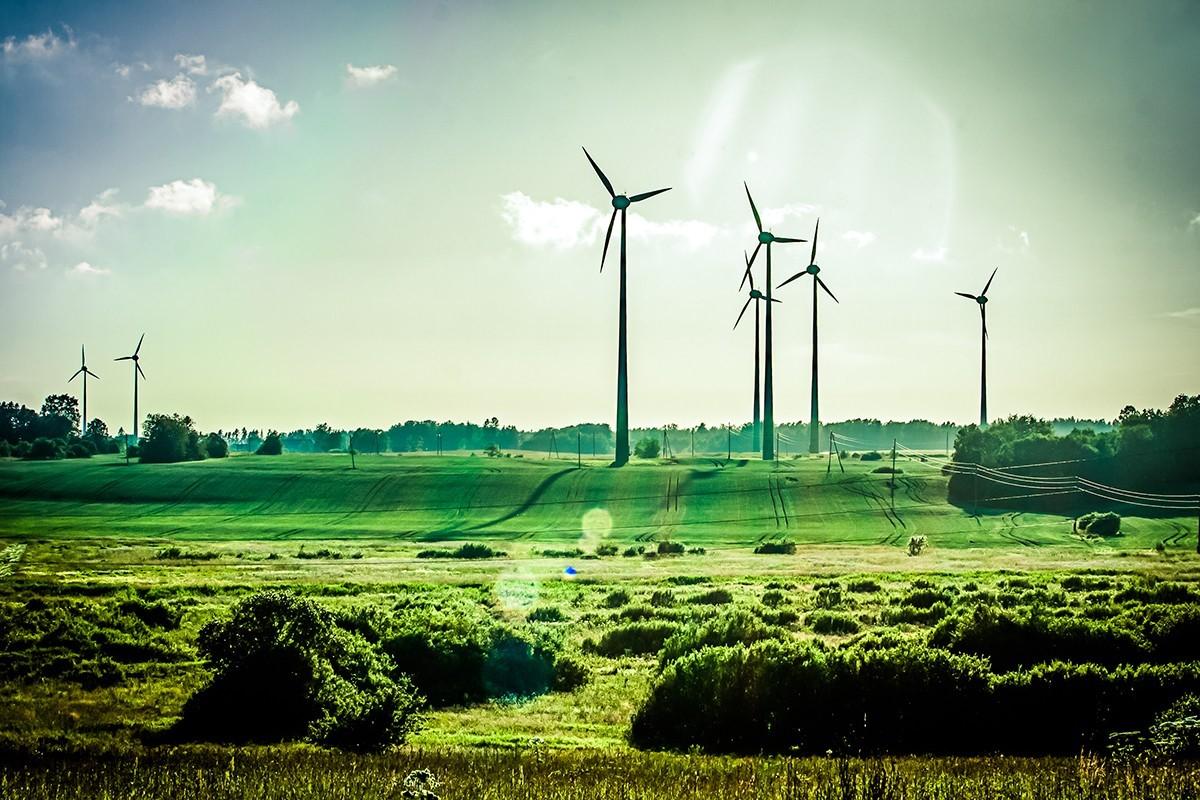 Где дышится легко: 5 стран с самой чистой экологией