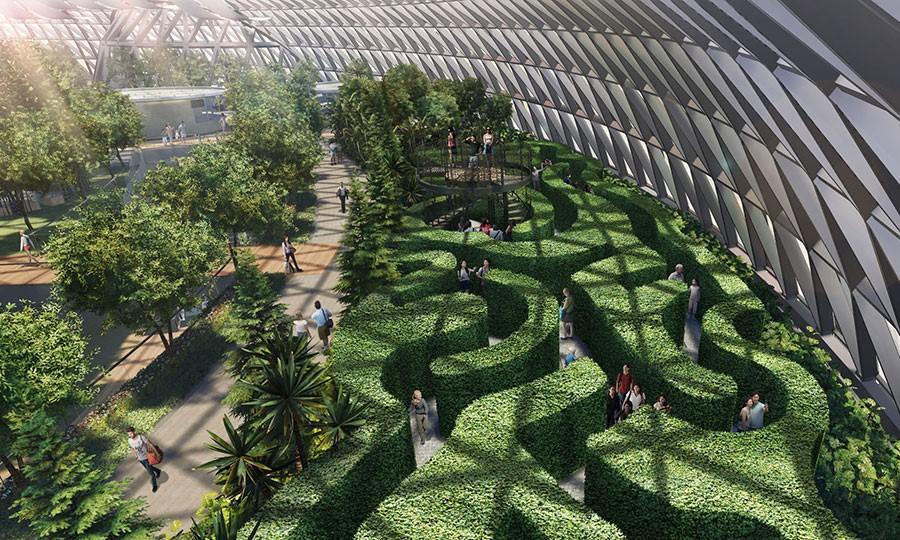Сингапурский аэропорт Чанги – кусочек живой природы среди бетонных джунглей