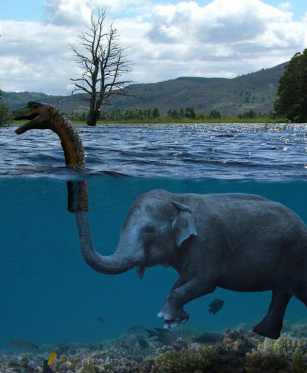 Чудовище шотландского озера Лох-Несс: 7 фактов о Несси