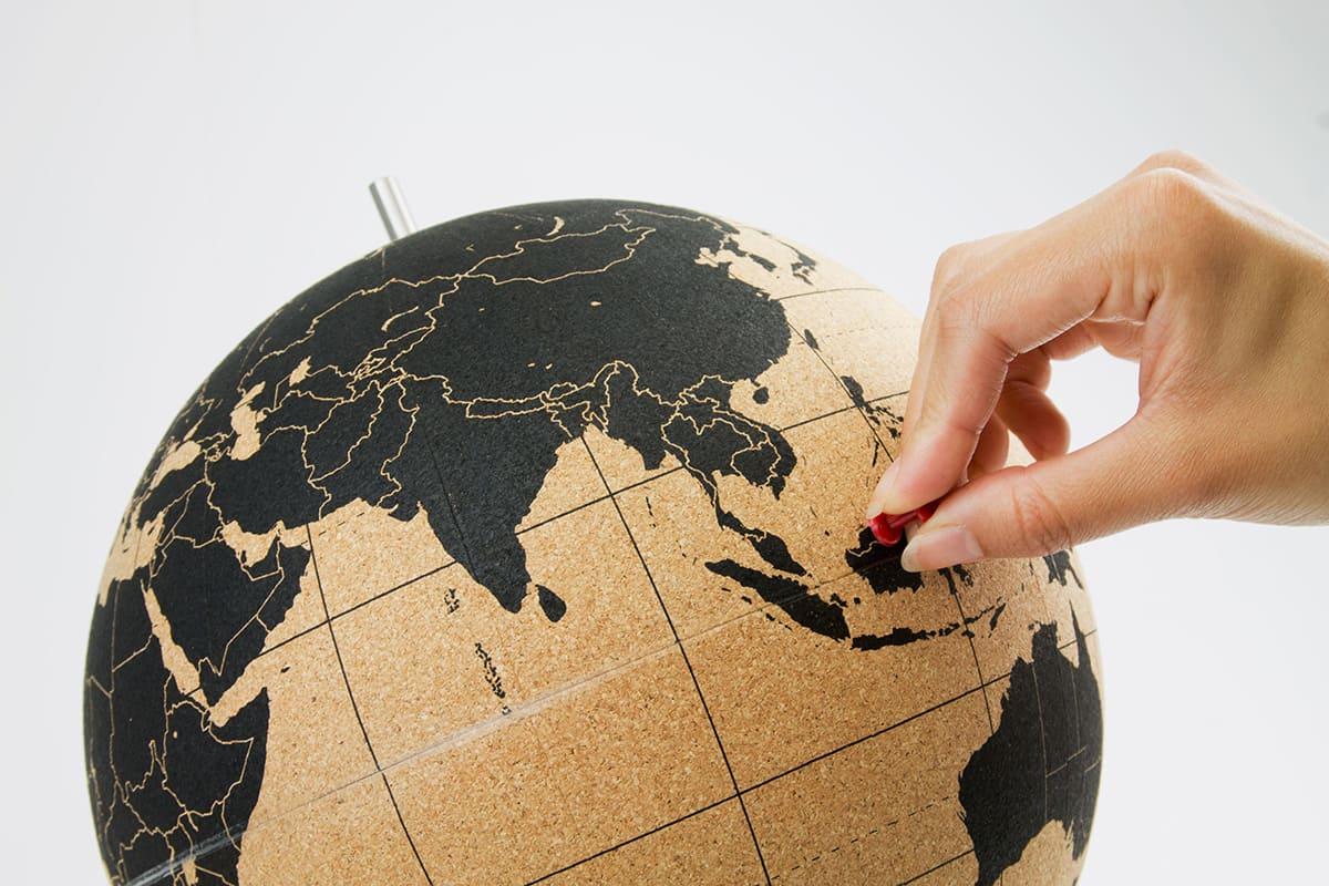 Карта мира человека картинки если следите